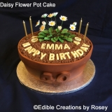 Daisy Flower Pot Cake