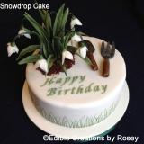 Snowdrop Cake