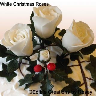 White Christmas Roses