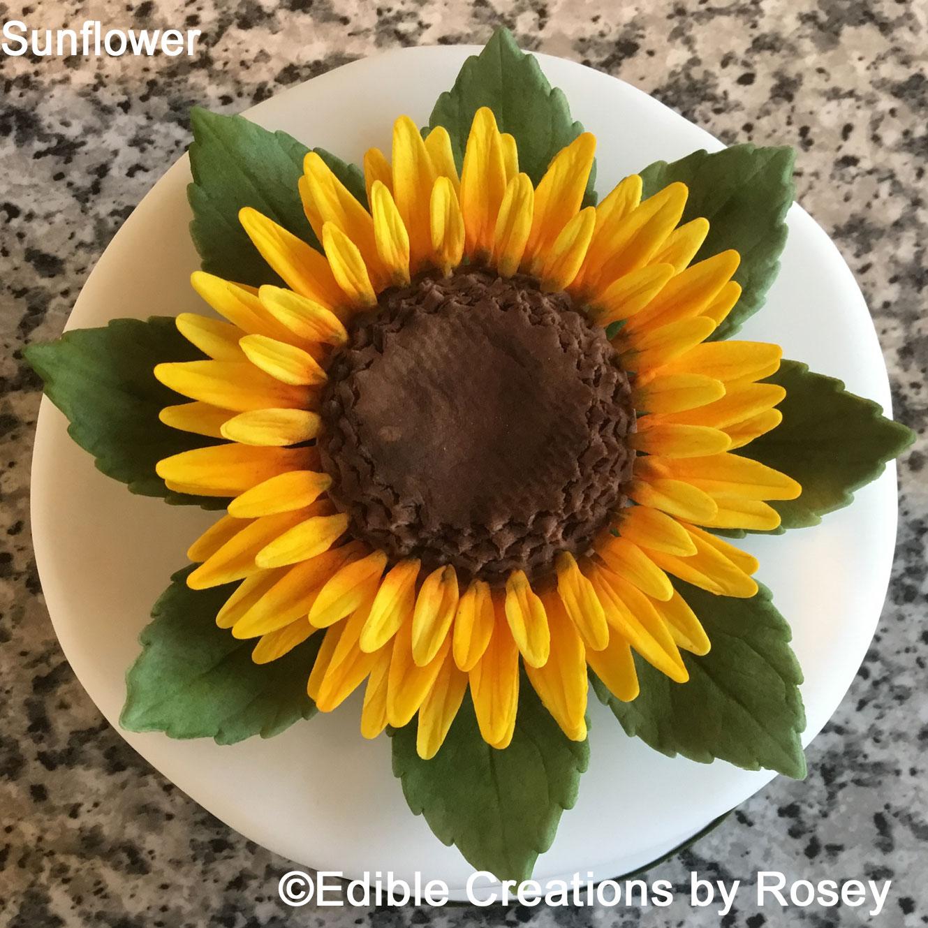 Sunflower & leaves