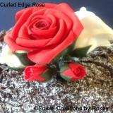 Curled edge rose