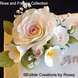 Rose and Freesia Collection