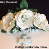 Baby Blue Roses and Daisies