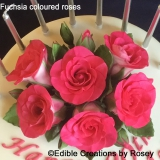 Fuchsia-coloured roses
