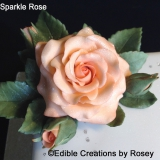 Sparkle Roses