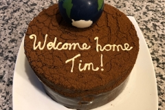 Chocolate globe Cake