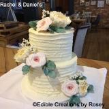 Rachel & Daniel's Cake