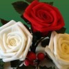 Sugarpaste roses and holly