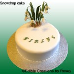 Sugarpaste snowdrop cake